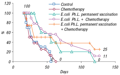 Antitumor and adjuvant effects of phagelysates of E.coli in mice with Ehrlich carcinoma