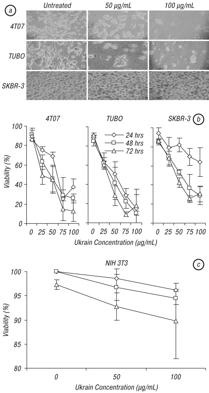 1 Ukrain, a plant derived semi synthetic compound, exerts antitumor effects against murine and human breast cancer and induce protective antitumor immunity in mice