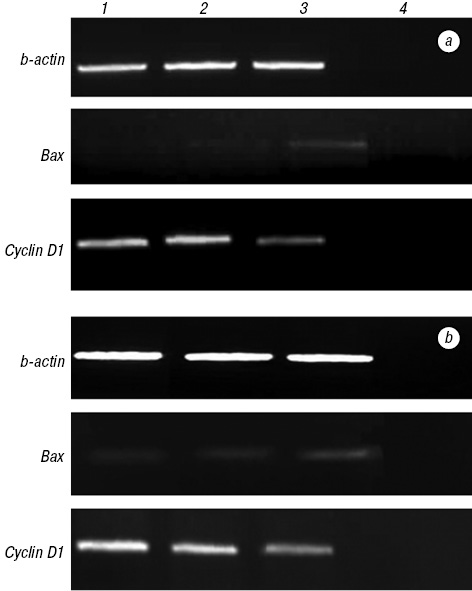 Growth inhibitory and adjuvant therapeutic potential of aqueous extract of Triticum aestivum on MCF 7 and HeLa cells