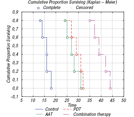 Fluorescent diagnosis and photodynamic therapy for C6 glioma in combination with antiangiogenic therapy in subcutaneous and intracranial tumor models