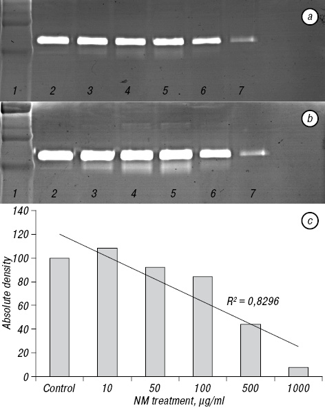 <i>In vitro</i> inhibition of matrix metalloproteinases, invasion and growth of Fanconi anemia human FANCA and FANCC lymphoblasts by nutrient mixture