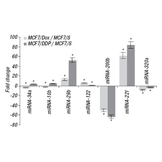 Effect of 5-azacytidine on miRNA expression in human breast cancer cells with different sensitivity to cytostatics