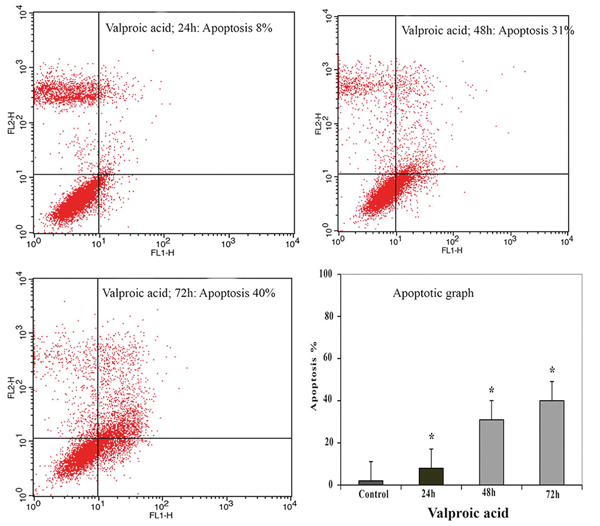 2222 Effect of valproic acid in comparison with vorinostat on cell growth inhibition and apoptosis induction in the human colon cancer SW48 cells <i>in vitro</i>