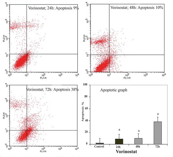 33331 Effect of valproic acid in comparison with vorinostat on cell growth inhibition and apoptosis induction in the human colon cancer SW48 cells <i>in vitro</i>