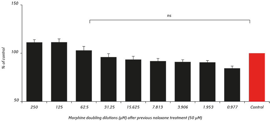 2465 fig2 The impact of morphine treatment on bladder cancer cell proliferation and apoptosis: <i>in vitro</i> studies