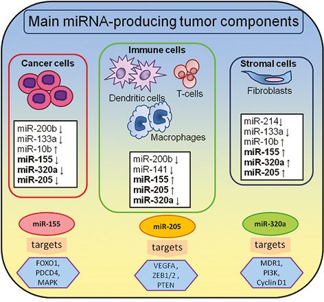 Tumor microenvironment derived miRNAs as prognostic markers of breast cancer