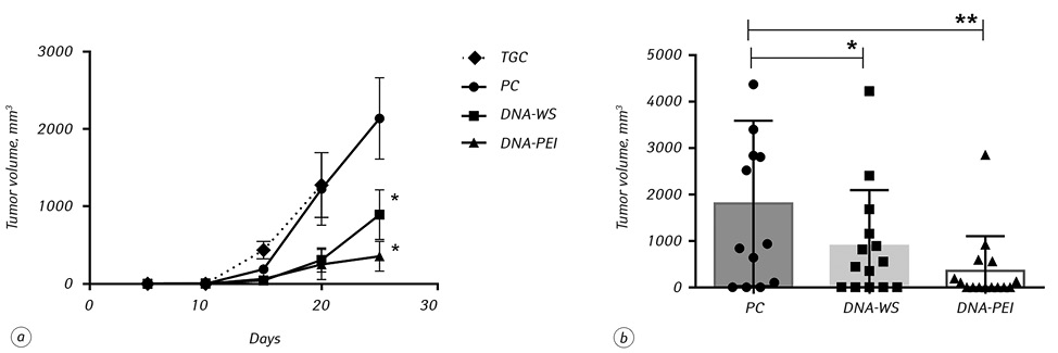 Conjugation of new DNA vaccine with polyethylenimine induces cellular immune response and tumor regression in neuroblastoma mouse model