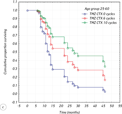 Temozolomide in glioblastoma treatment: 15 year clinical experience and analysis of its efficacy