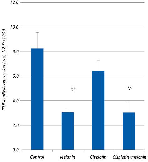 Changes in expression of TLR 4, TGF β, INF γ, TNF α in cultured T24/83cells of invasive bladder cancer treated with cisplatin and/or polyphenolic adjuvant melanin