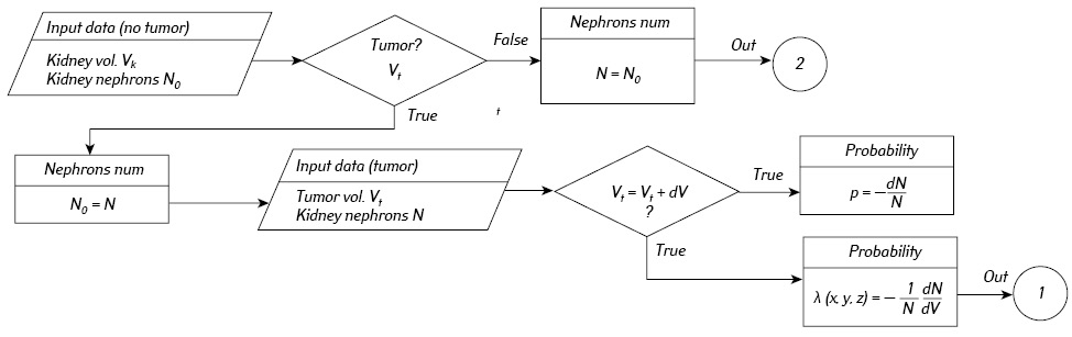 Predicting changes in glomerular filtration rate in patients with kidney cancer using a mathematical model