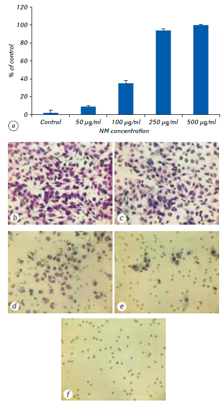 3 A nutrient mixture reduced tumor growth of SK UT 1 human leiomyosarcoma cells <i>in vivo</i> and <i>in vitro</i> by inhibiting MMPs and inducing apoptosis