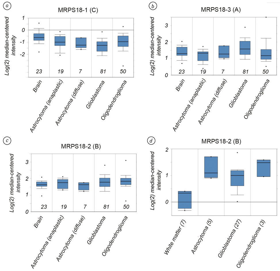 Expression pattern of MRPS18 family genes in gliomas