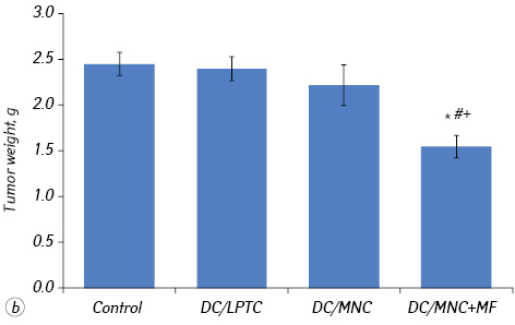 Magnetically sensitive nanocomplex enhances antitumor efficacy of dendritic cell based immunotherapy